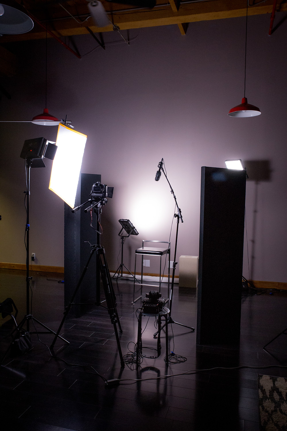 Thespis Media Studio set up for express video session
