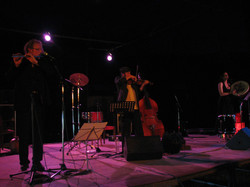 Concert mercredi soir (31)