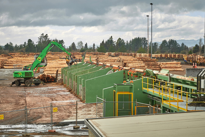 8. Aug 2020_Murupara Log Yard.jpg