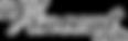 vincent-audio-300x98.png