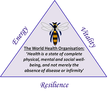 Triangle of health - energy, vitality and resilience. WHO definition of health