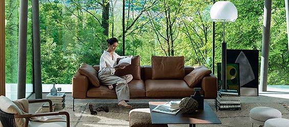 Flexform luxury preview.jpg
