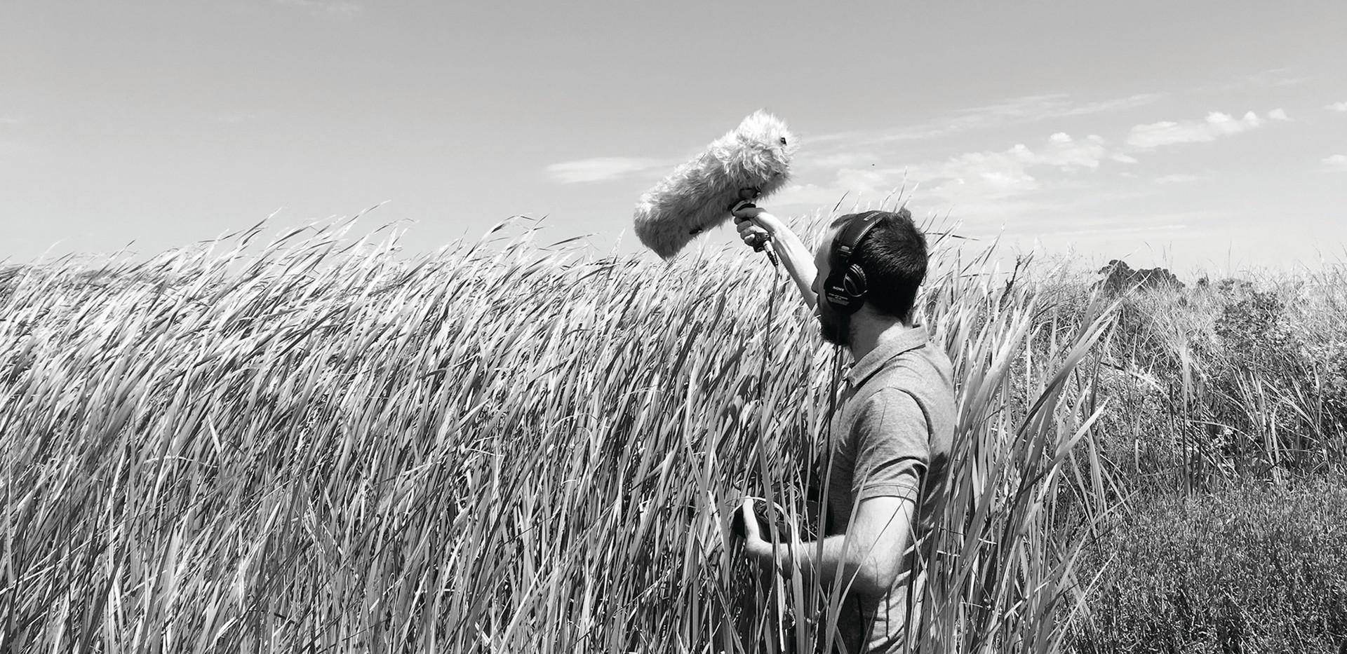 KEVIN CORCORAN / Musician / Sound Artist (San Francisco)