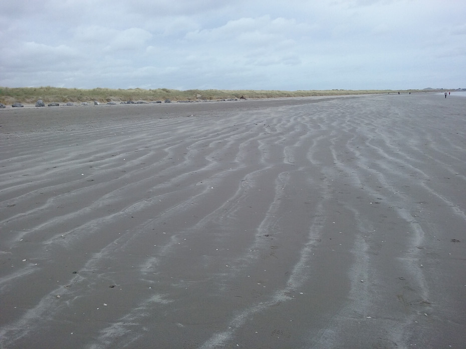 Blown Sand