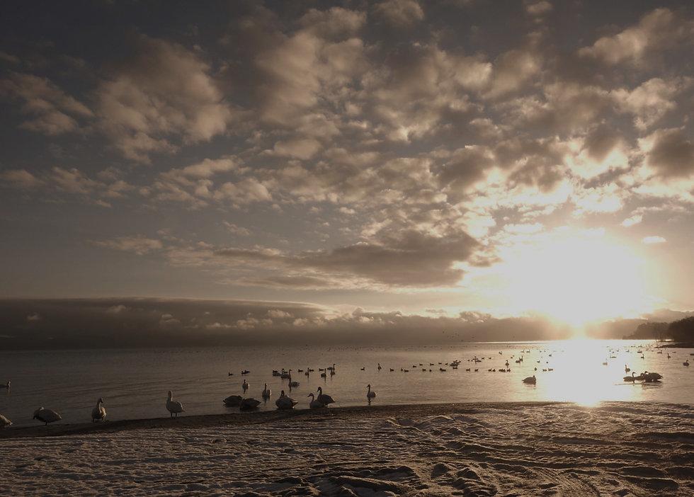 猪苗代湖(日の出) (3)_edited_edited_edited.jpg