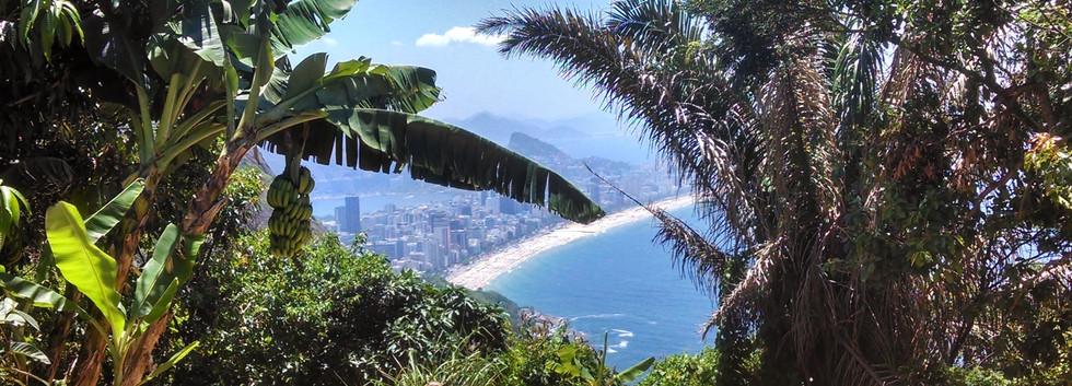 Lookout Vidigal Favela