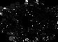 LOGO NEA tb _ 554x400 inkscape.png
