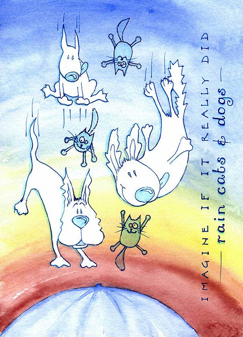 Raining Cats and n Dogs Humour Funny Greeting Cards