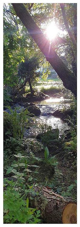 Moor time secrets river sun sparkle photo greeting card