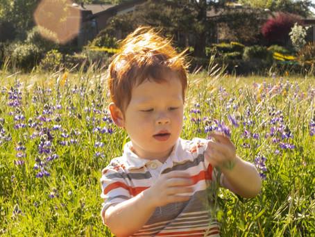 A Flowery Fairytale Spring