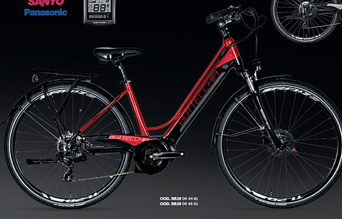 BOTTECCHIA BE19