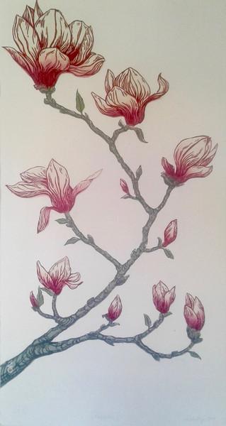 'Magnolia'