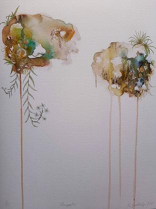 'Raupeka - Easter Orchid' fine art giclēe print