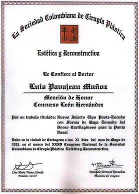 Best Plastic Surgeon Dr Luis Pavajeau Award Winer