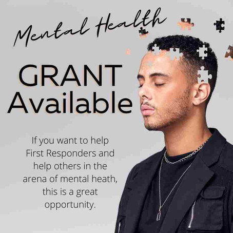 Grant Program for Mental Health Niches