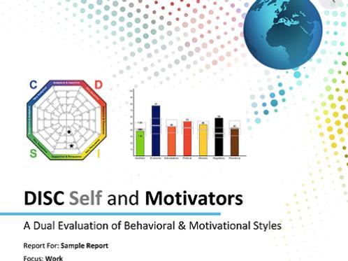 DISC & Motivators Assessment