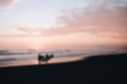 Surf Wijk aan Zee.jpg