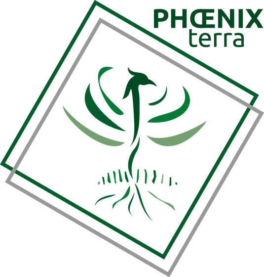 PHOENIX TERRA 4 COUL ETE v2 sans fond.pn