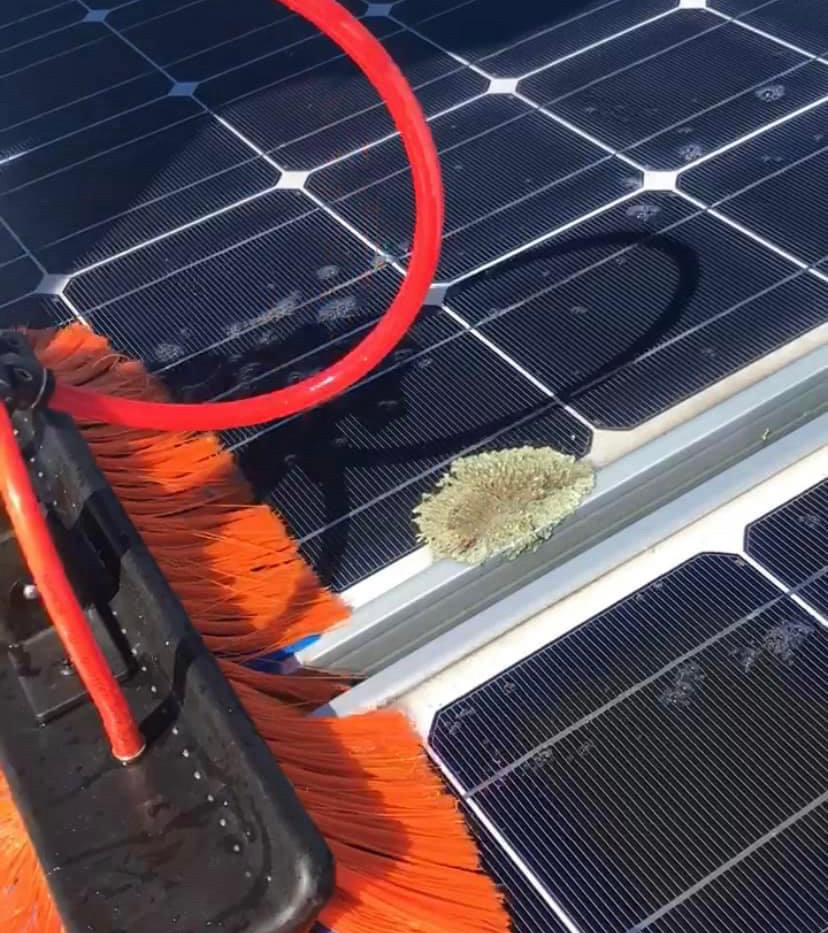 Solar Panel Cleaning - NRSE -call us today !