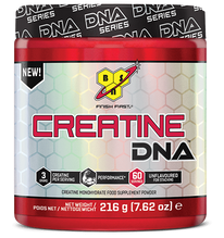 creatine-dna.png