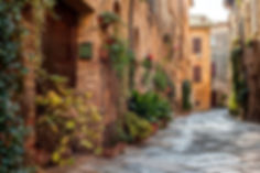 italian-street-homes-flowers.jpg