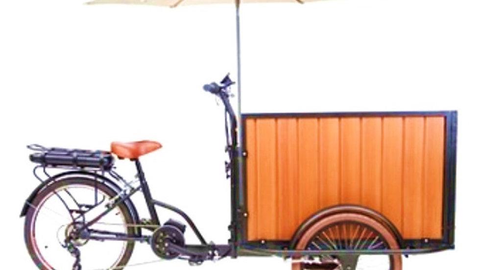 WINGS-M500B e-trike 500W Li-ion Battery electric cargo trike full package