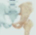 Screen Shot 2020-01-14 at 10.01.08 PM.pn