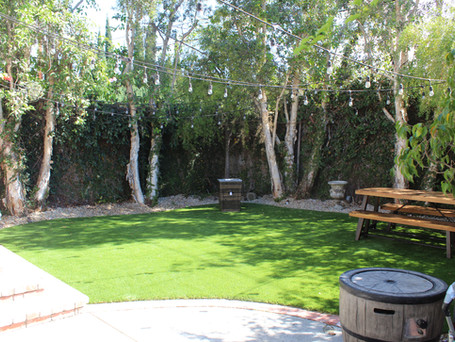 synthetic grass back yard.JPG
