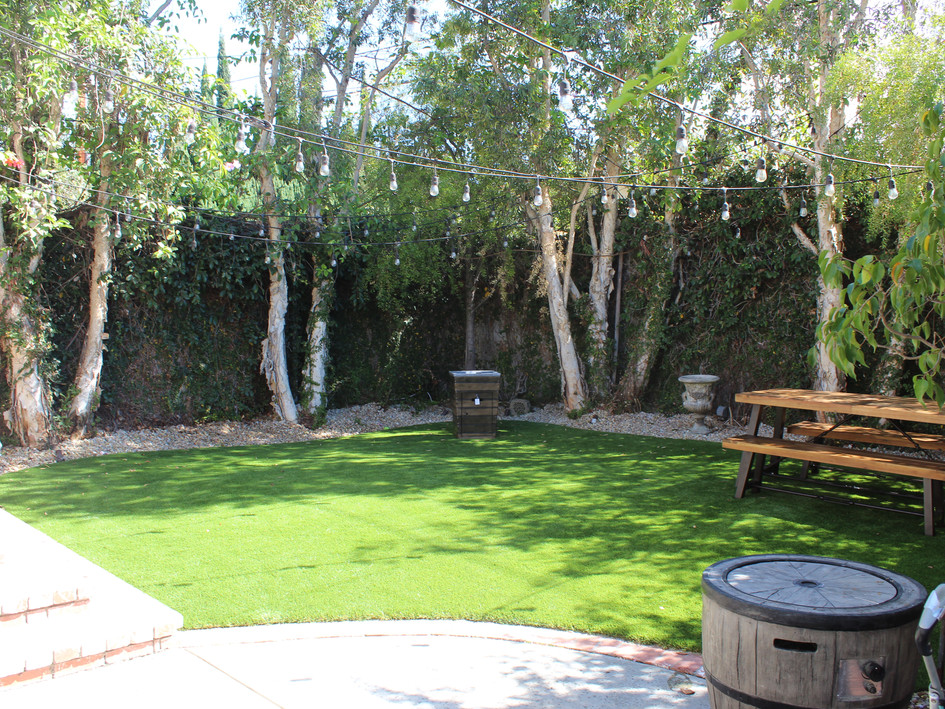 synthetic grass back yard.JPG