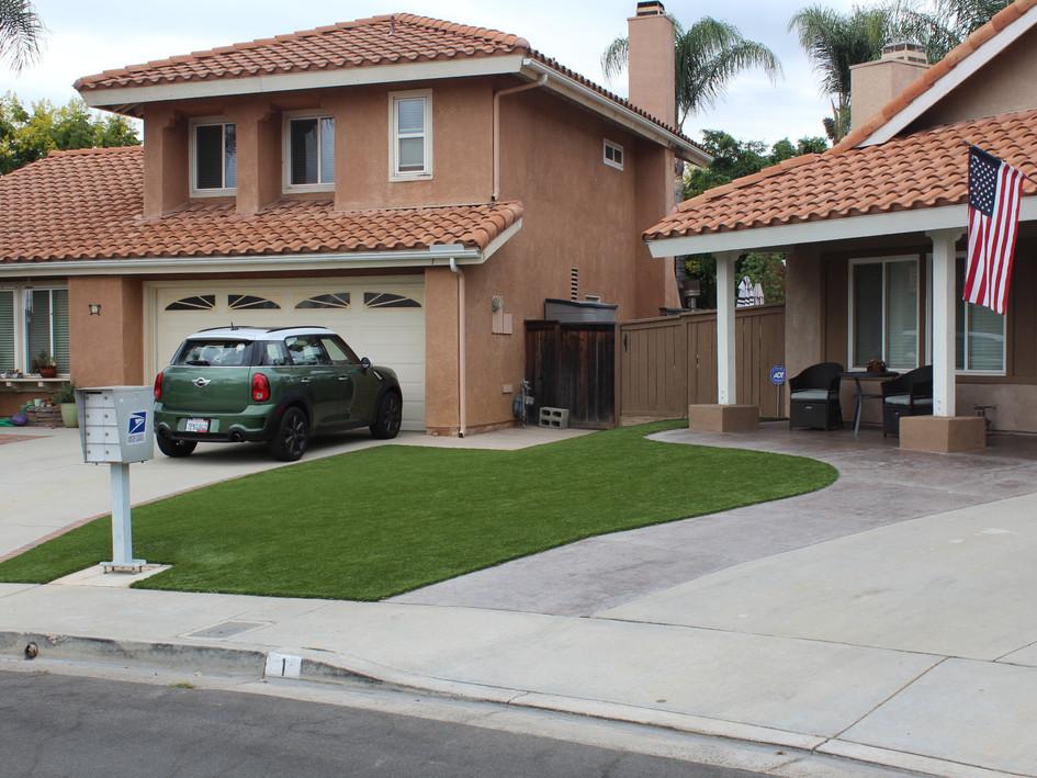 front yard turf.JPG