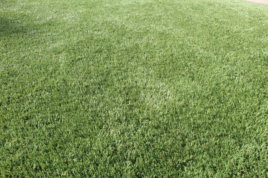 The Process of Installing Artificial Turf