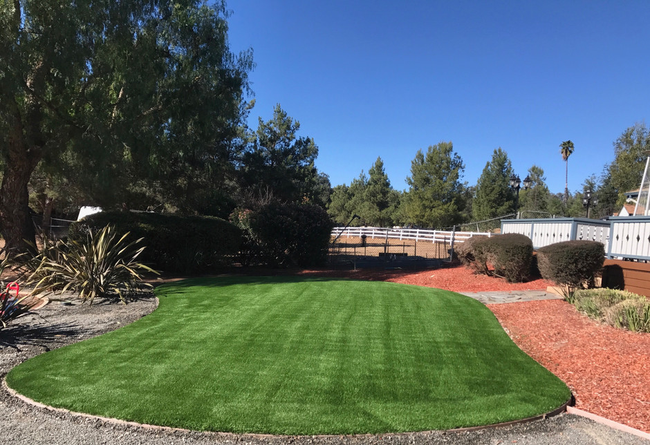 Achieve Your New Year's Resolution with Artificial Turf