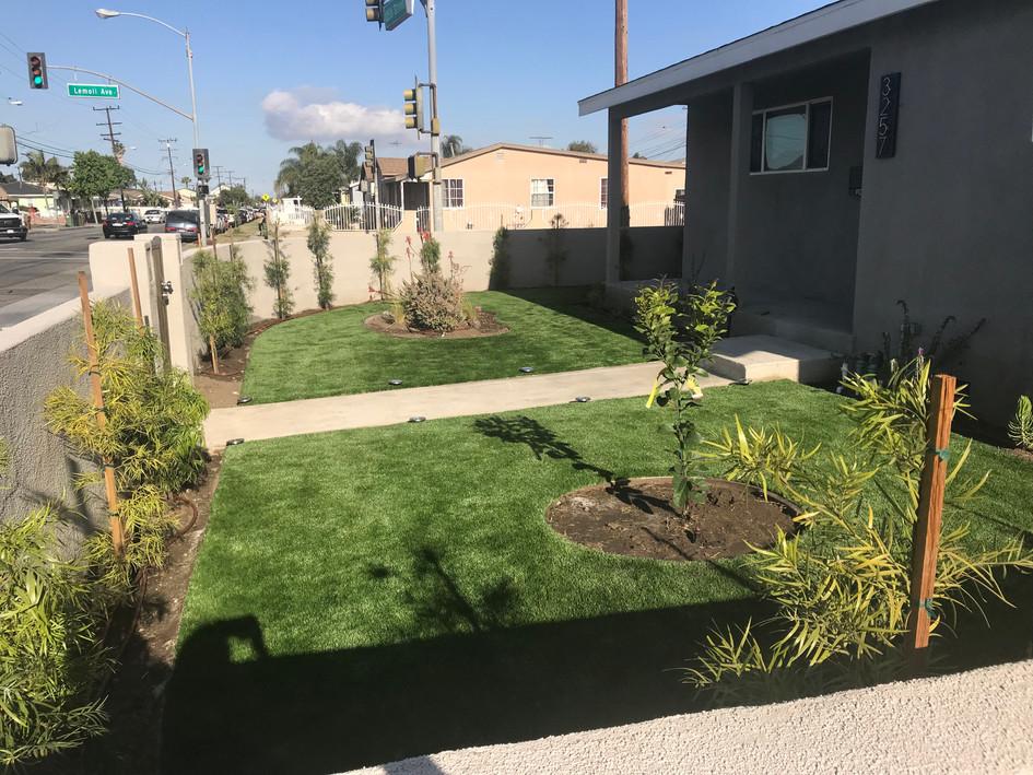 front yard remodel turf.JPG