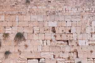 Kotel wall with grass growing between the stones