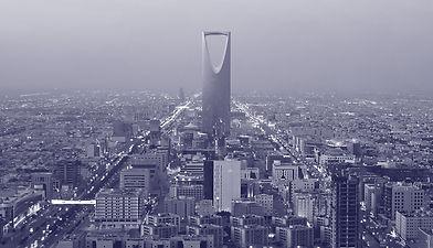 Mono_Saudi.jpg