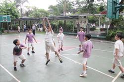 Basket ball Court 2