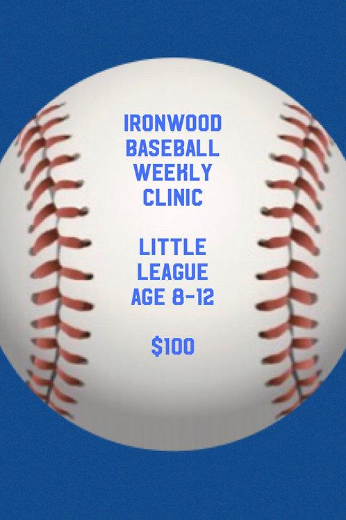 BB Clinic AM Group/Little League