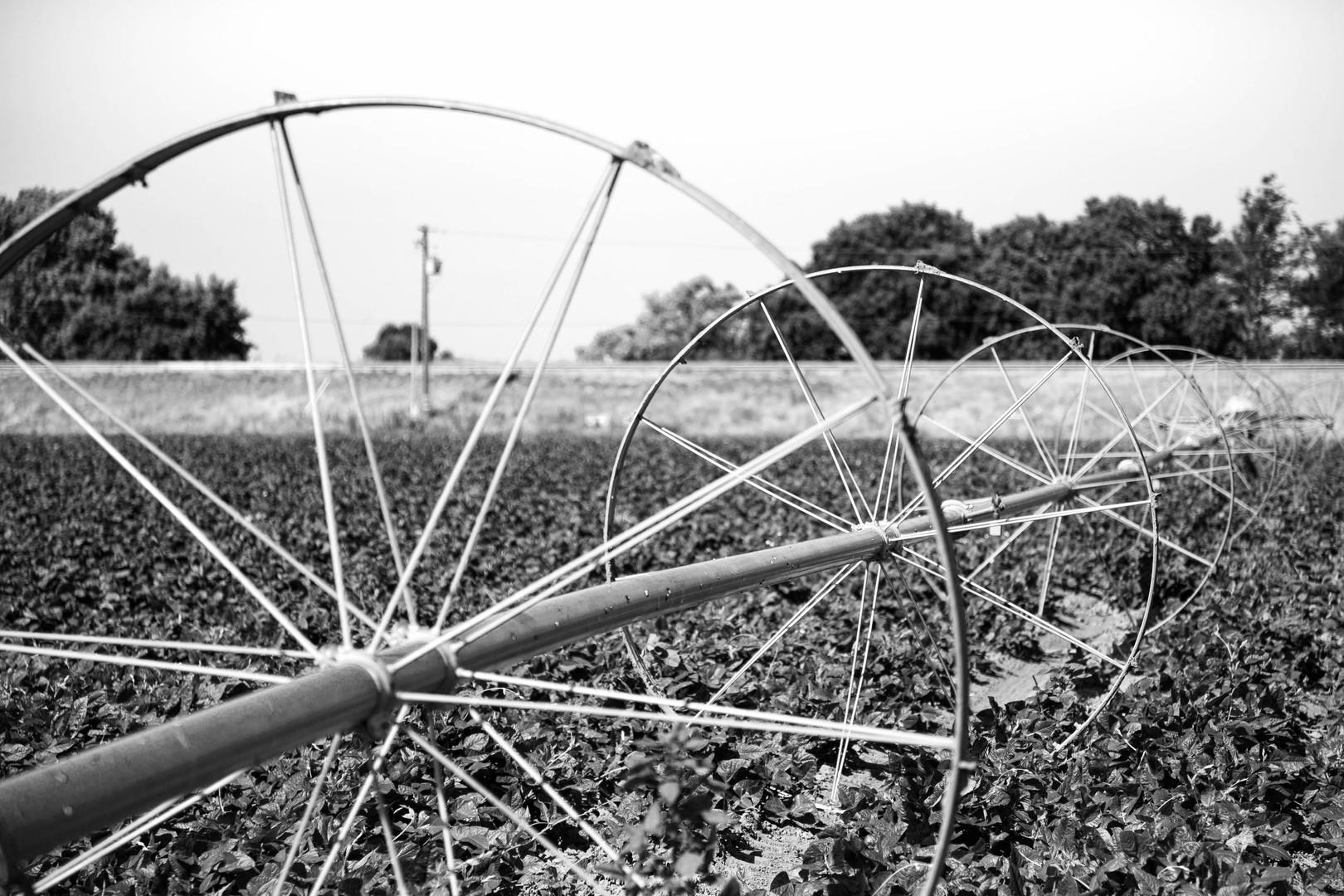 An Irrigation Wheel in the Field