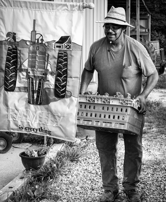 Herb Sr., with a Load of Fresh Greens on the Way to the Cooler