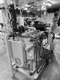 NDR_EP-Engine-BW.jpg