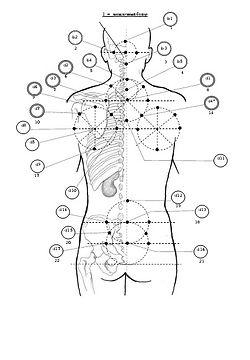 Геометрический метод акупунктуры профессора Биня