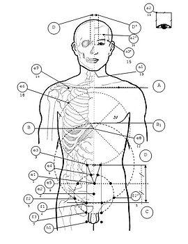 Геметрический метод акупунктуры доктора Биня