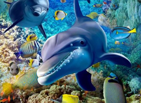 모바일 & PC 바다이야기의 장점 과 단점