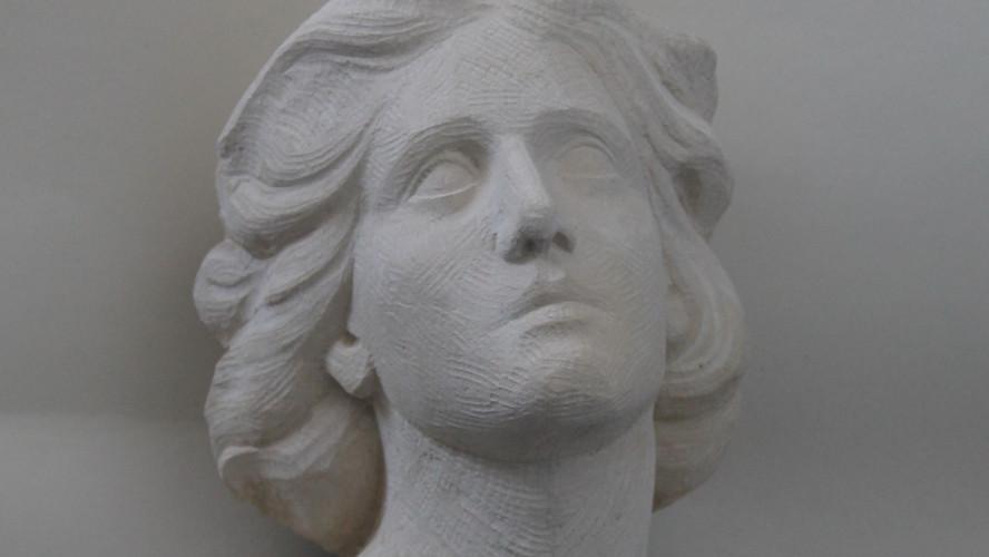 A 3/4 head portrait