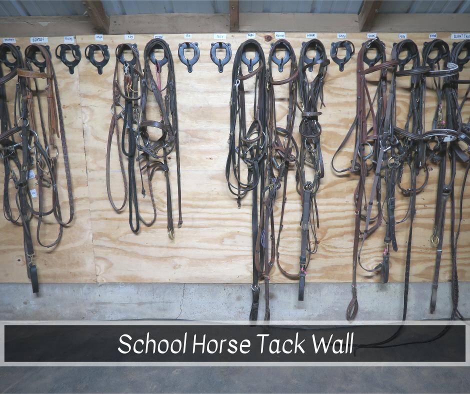 School horse tack.png