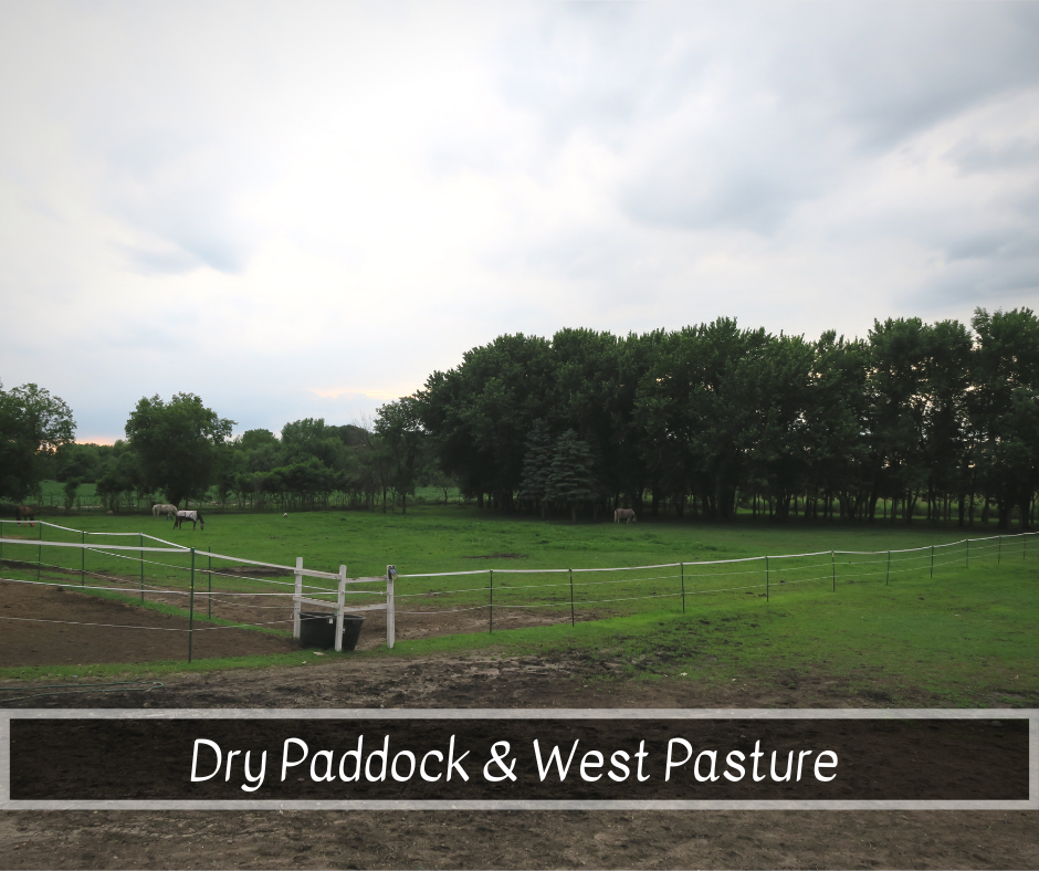 Dry Paddock and West Pasture.png