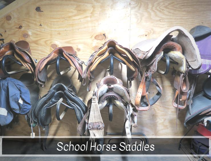 School Saddles.png