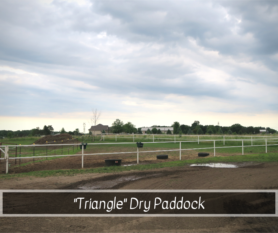 Triangle Dry Paddock.png