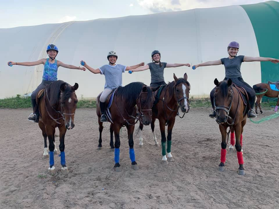 J.J's Equestrian Academy offers horseback riding lessons on our beautiful and kind Arabian Horses. O