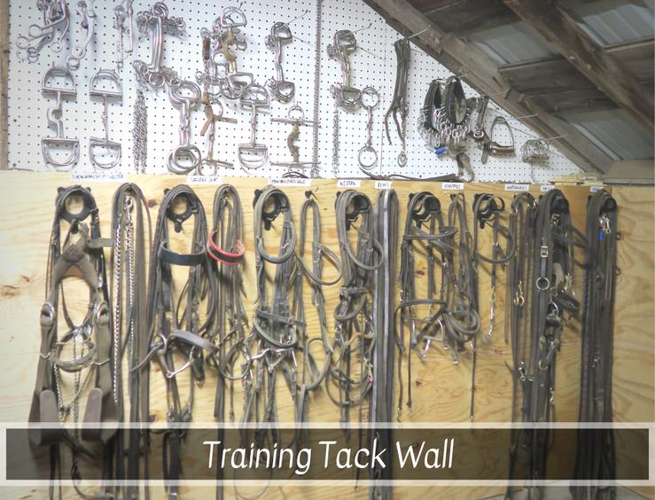 Training Tack.png